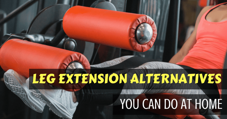 leg extension alternatives