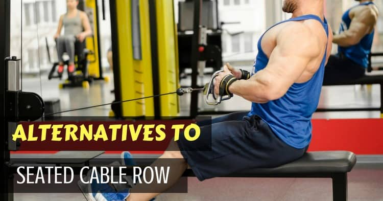 seated cable row alternatives