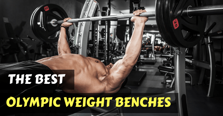 best-olympic-weight-benches