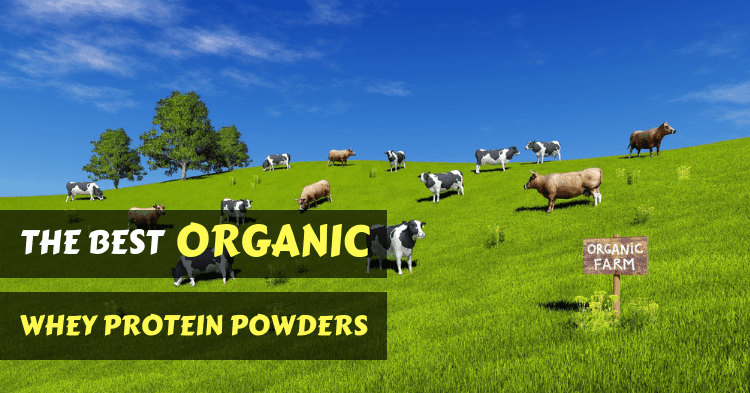 best-organic-whey-protein-powders