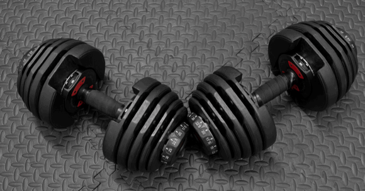 best budget adjustable dumbbells