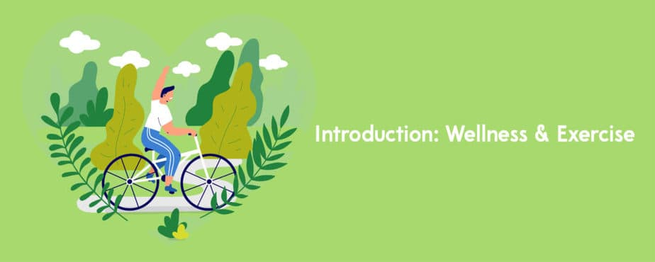 2. Introduction Wellness _ Exercise-01